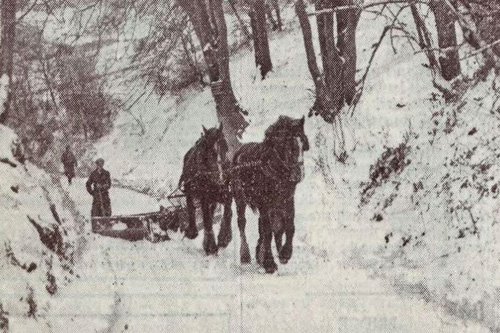 horse-drawn snowplough
